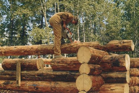 How To Cut Logs For Home