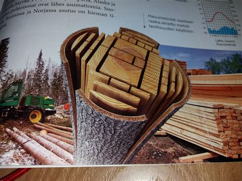 How To Cut Logs Into Planks Exercise