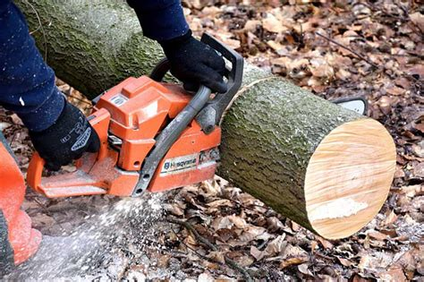 How To Cut Timber Down