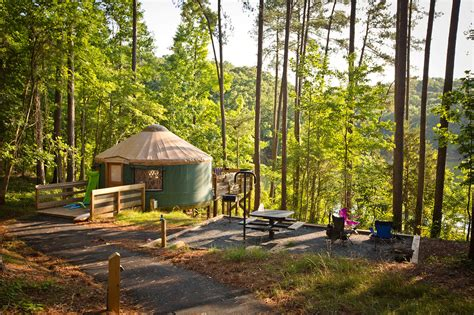 How To Debark Wood For State Park Camping