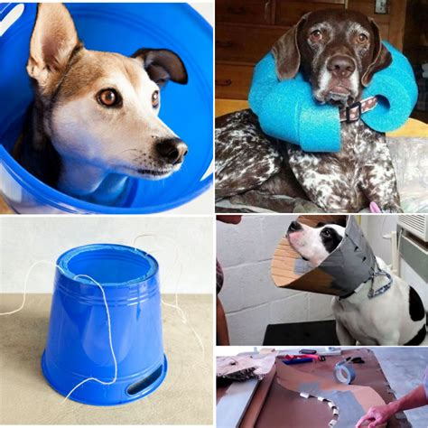 How To Diy A Dog Cone