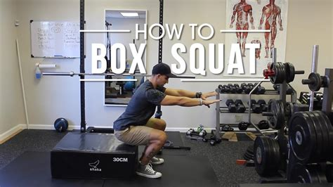How To Do A Box Squat