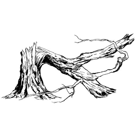 How To Draw A Fallen Tree