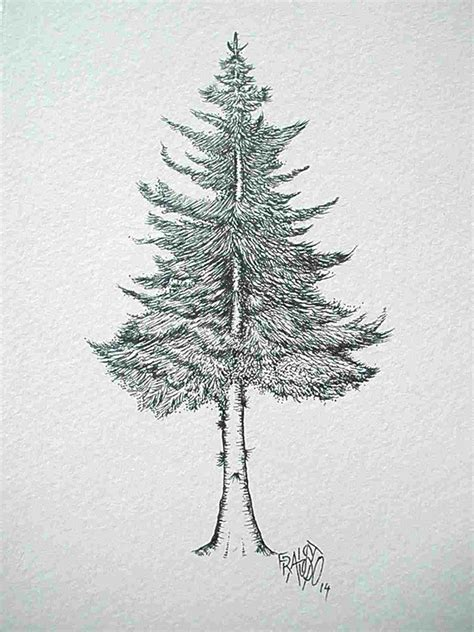 How To Draw A Pine Tree Easy