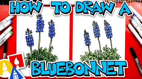 How To Draw A Texas State Flower