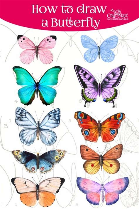 How To Draw Step By Step Sites