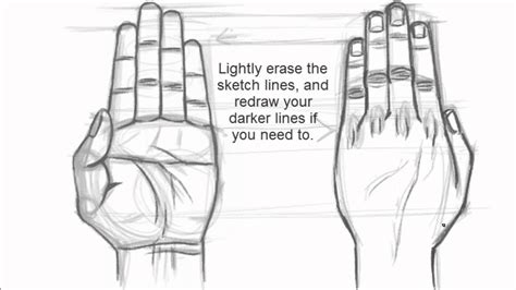 How To Draw The Back Of A Hand