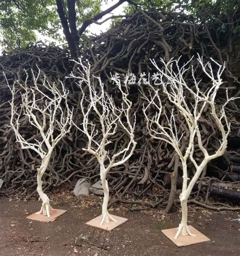 How To Dry Crab Tree Branches