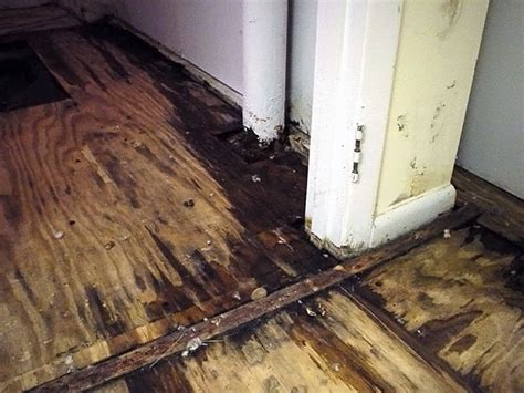 How To Dry Out Wood Subfloor