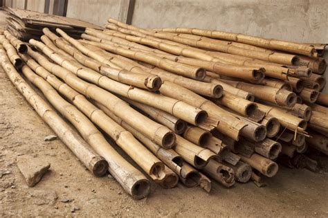 How To Dry Timber Bamboo