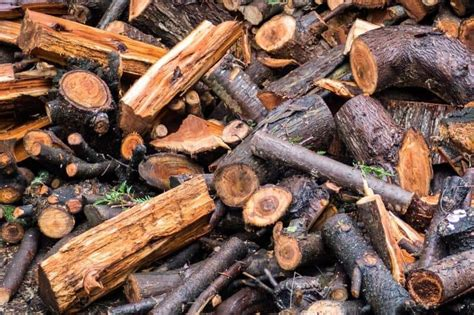 How To Dry Wet Firewood Fast In The Winter