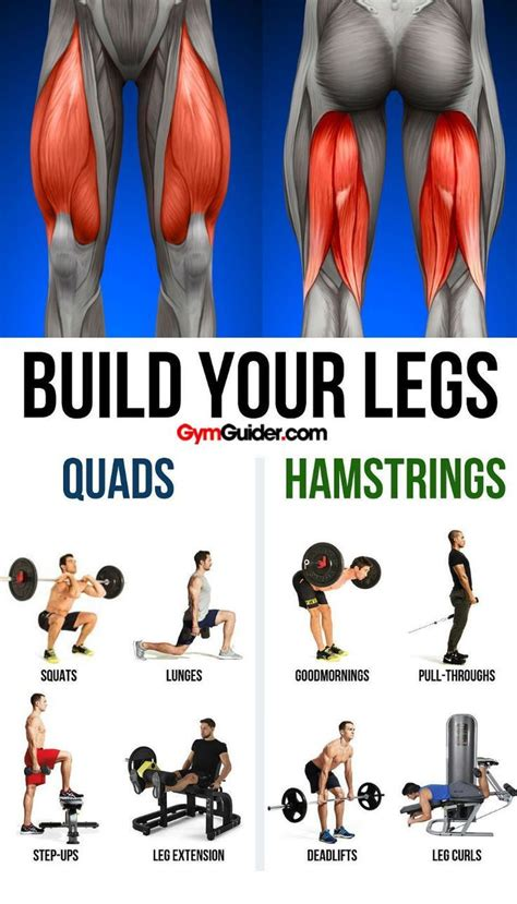 How To Get Huge Legs Fast