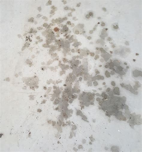 How To Get Oil Stains Out Of Untreated Wood