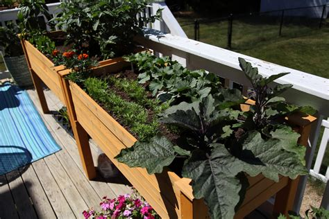How To Grow A Garden On Your Deck