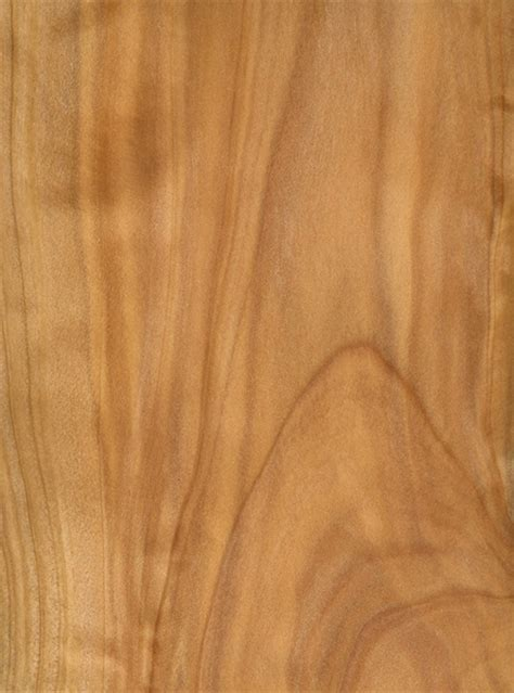 How To Identify Cypress Lumber