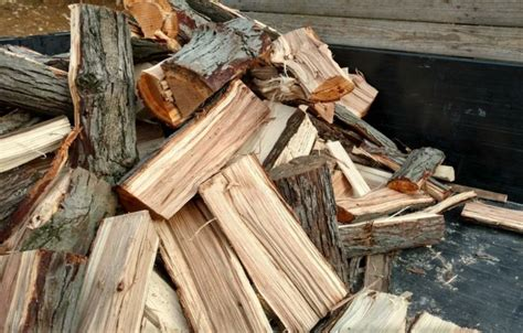 How To Identify Hickory Wood For Smoking