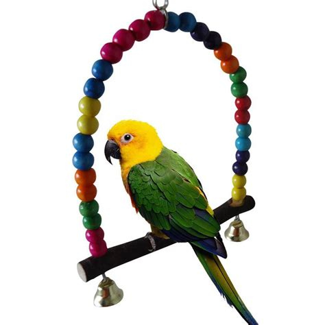 How To Make A Bird Swing For A Macaw Bird