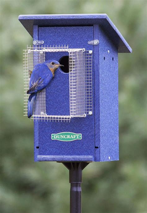How To Make A Bluebird House Poles