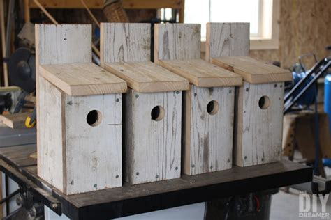 How To Make A Bluebird House With Fence Boards