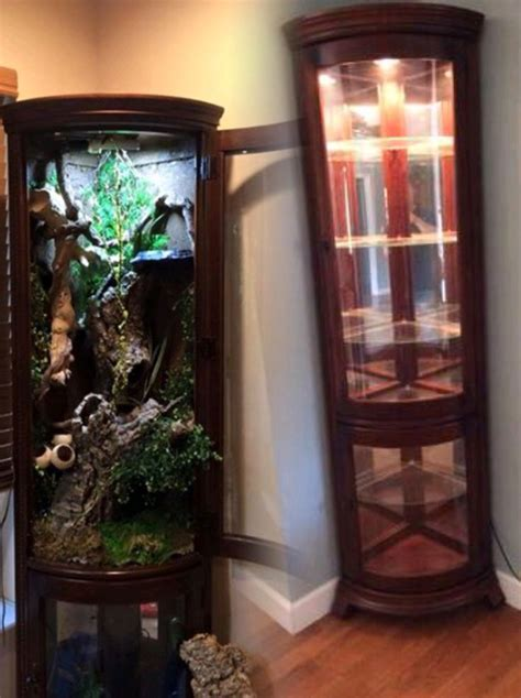How To Make A Curio Cabinet Into A Terrarium