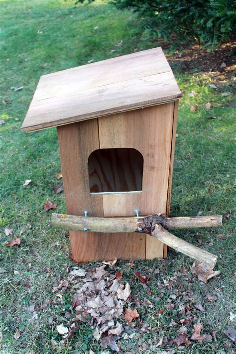 How To Make An Owl Box Plans