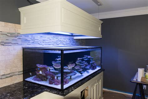 How To Make Floating Aquarium Canopy Plans