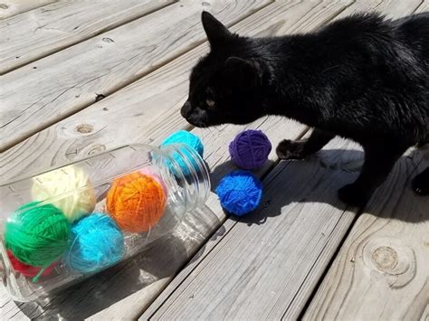 How To Make Toys Out Of Yarn For Cats