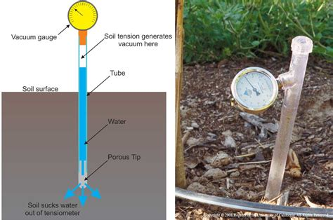 How To Measure Moisture Content