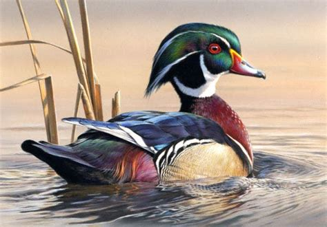 How To Paint A Duck In Acrylic