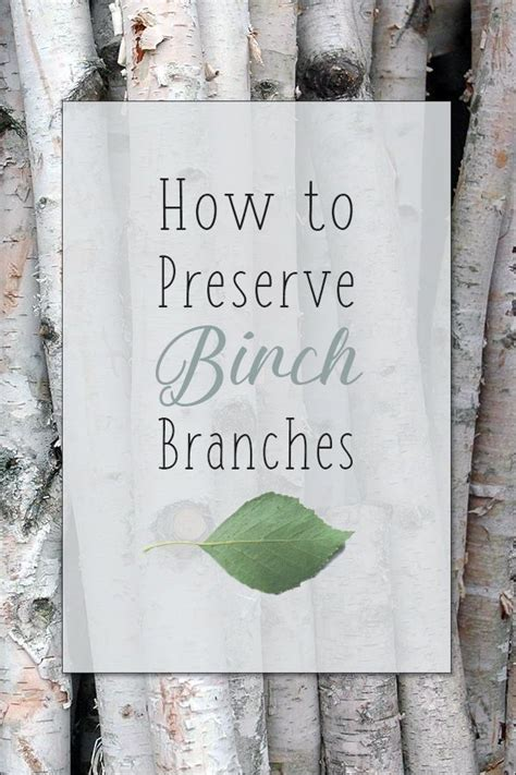 How To Preserve Tree Branches For Crafts