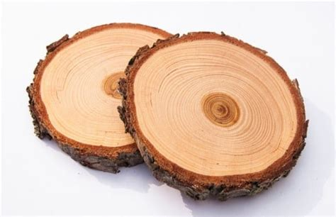 How To Preserve Wood Slices From Drying Out An Iphone