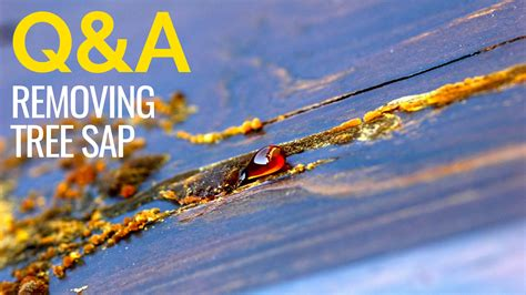How To Remove Sap From Wood Beams