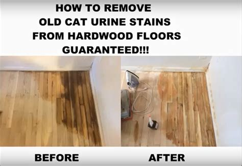 How To Remove Wood Stain From Wood Floor