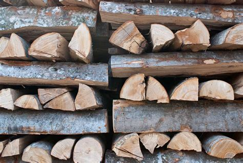 How To Season Wood Smoker