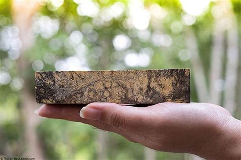 How To Stabilize Wood With Minwax Hardener