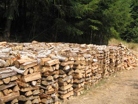 How To Stack Firewood To Dry