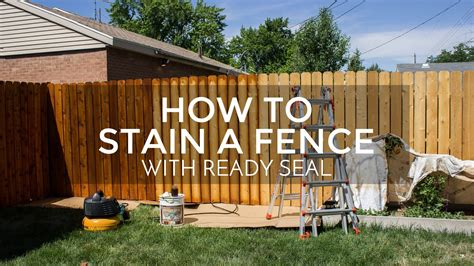 How To Stain An Old Fence Youtube