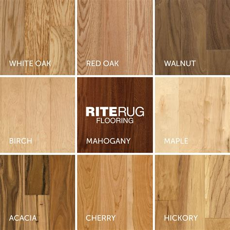 How To Tell Wood Types