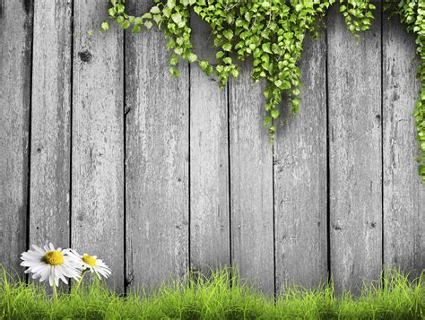 How To Treat Untreated Wood Fence