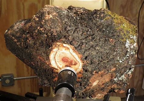 How To Turn A Burl On A Lathe