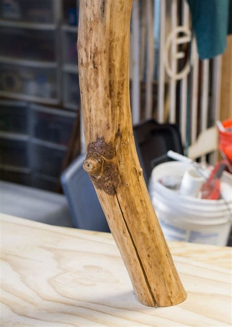 How To Use Mesquite Tree Branches For Decor