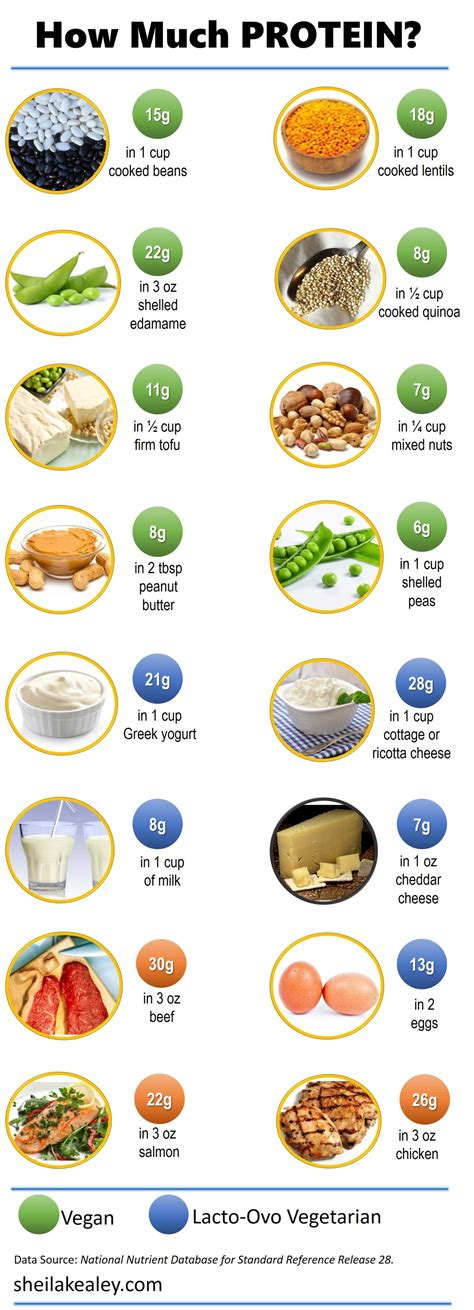 How many grams of protein daily diet Image