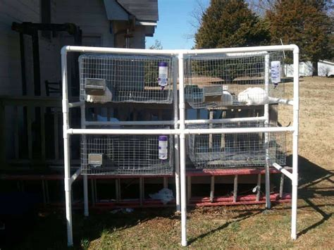 How to build rabbit cages with pvc pipe Image