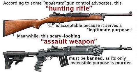 How Does An Assault Rifle Differ From A Hunting Rifle And How Many People Own Assault Rifles