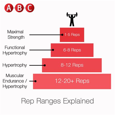 How Many Reps And Sets To Build Muscle Mass And How To Build Up Core Muscle Strength