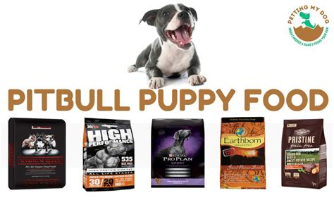 How To Build Muscle On My Pitbull Puppy And Is It Good To Workout Everyday To Build Muscle
