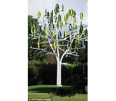 Best How much is a standby generator.aspx