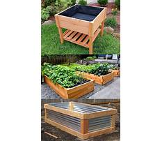 Best How to build a raised bed garden box cheap