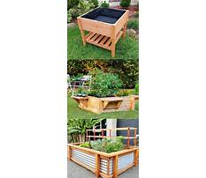 Best How to build a raised bed garden cheap