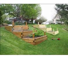 Best How to build a raised bed garden on a slope